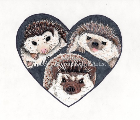3 Hedgies for Veronica Watermarked.jpg